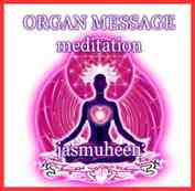 s-mm-organ-message-med