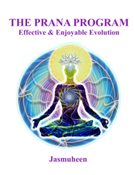The Prana Program – Effective & Enjoyable Evolution