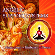 Angelic Support Systems