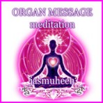 Organ Message Meditation