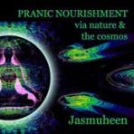 Pranic Nourishment Meditation